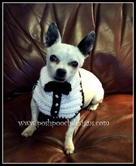 Helping our users. ​Crochet Tuxedo for Small Dog.